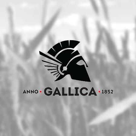 12 DB GALLICA PREMIUM PILS DOBOZOS ajándék nyakpánttal